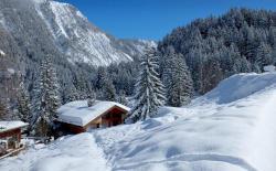 Chalet Rikiki, Courchevel 1650 - Top 10 Ski In/Ski Out Chalets