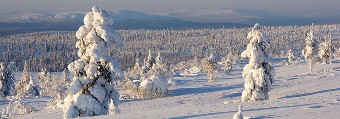 Ski Apartment Holidays Finland