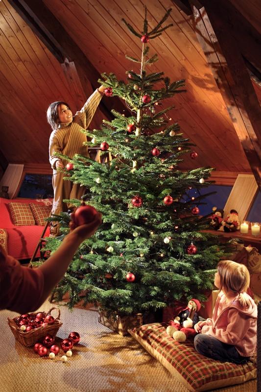 Christmas tree deals 2018