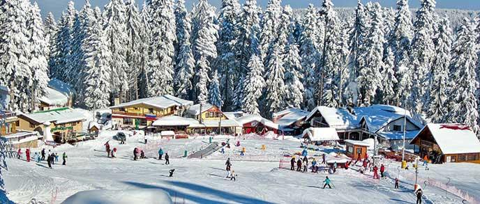 Ski Chalet Holidays Bulgaria
