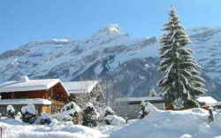 Ski Chalet Holidays With Flights