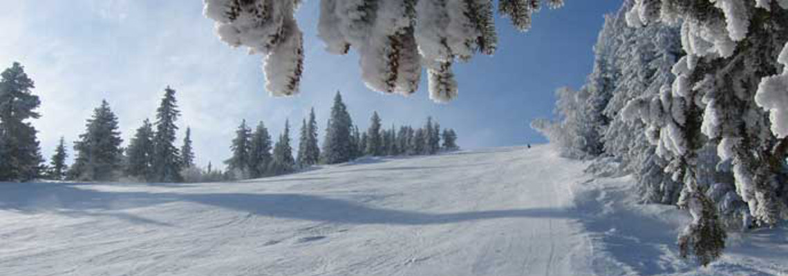 Ski Hotel Holidays Bulgaria