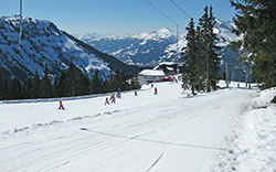 Ski Resorts Suitable for Beginners