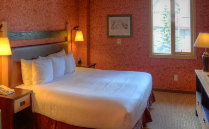 The Fox Hotel & Suites - 10