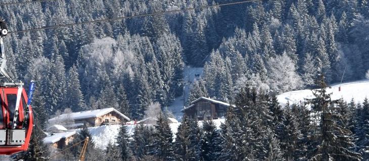 Ski Holidays Les Gets