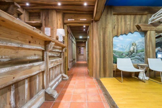 Premium residence Les Alpages de Chantel - 5