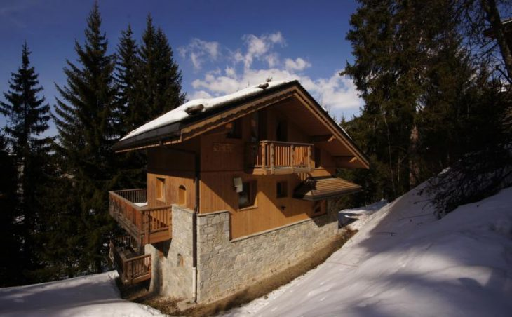 Chalet James in La Tania , France image 1