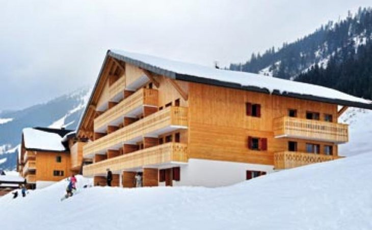 Residence Le Grand Lodge in Chatel , France image 1