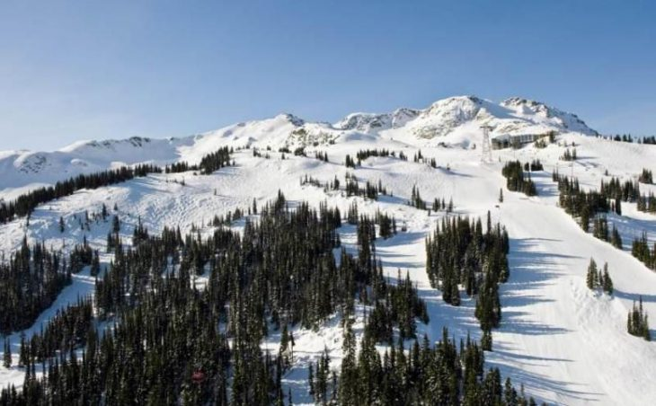 Whistler in mig images , Canada image 7