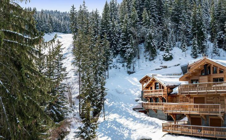 Chalet Belvedere in La Tania , France image 1