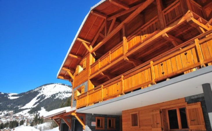 The Chalet in Chatel , France image 1