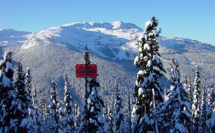 Whistler in mig images , Canada image 1
