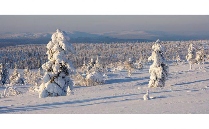 Saariselka in mig images , Finland image 6